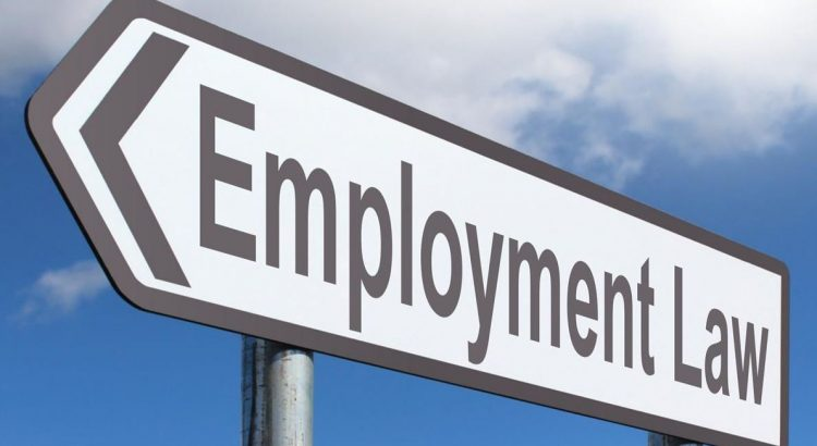 employment law 2020